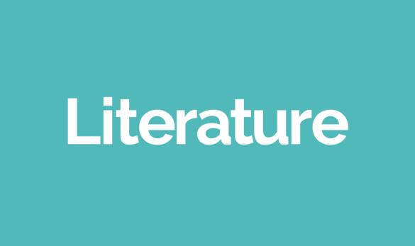 portfolio-slides-literature